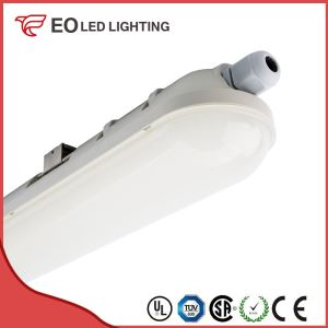 1200mm 36W ECO LED Tri-Proof Light