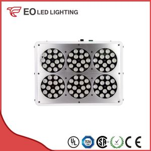 209W Blue LED Grow Lights